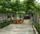 cazare 2 Mai - Casa Elena 2 Mai