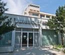 Hotel Brandusa Venus